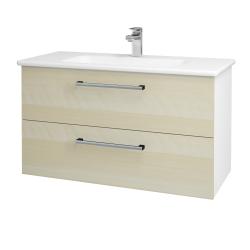 Dreja - Kúpeľňová skriňa GIO SZZ2 100 - N01 Bílá lesk / Úchytka T03 / D02 Bříza (129613C)