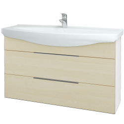 Dreja - Kúpeľňová skriňa TAKE IT SZZ2 120 - N01 Bílá lesk / Úchytka T05 / D02 Bříza (153243F)